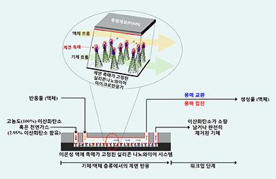 화공 김동표 교수팀, 효율 높은 이산화탄소 동시 포집•전환시스템 개발