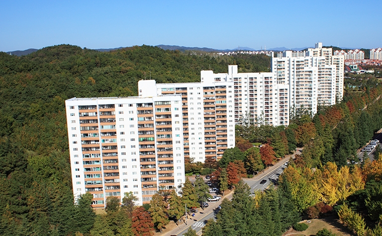 교수아파트를 원경에서 찍은 사진입니다.
